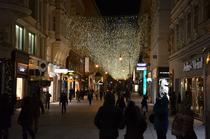 FOTOGALERIE Cum arata luminitele si targul de Craciun de la Viena