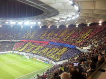 Steaua, pe Arena Nationala