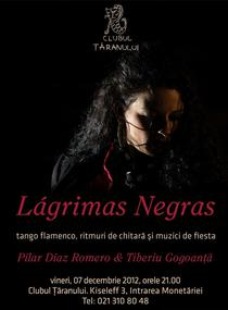 Lagrimas Negras - Tango flamenco