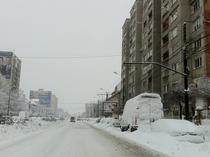 Timisoara este sub zapada