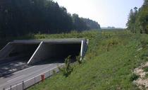 UN ecoduct de tip cut&cover - Elvetia A1 Font