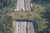 Pasaj verde pe autostrada pentru trecerea animalelor