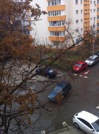 parcare romaneasca