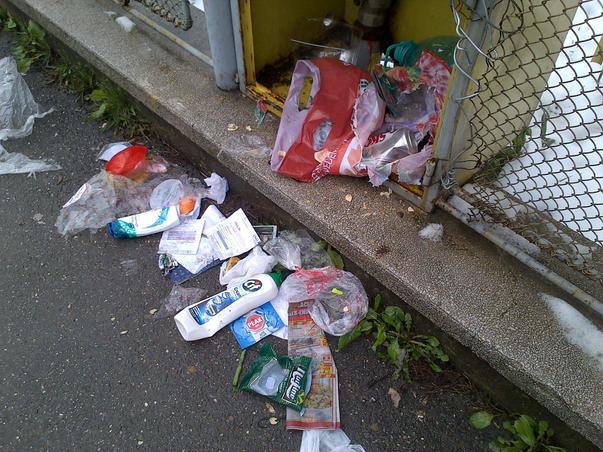 Un nesimtit identificat din Campina, care isi arunca gunoiul pe trotuar (2)