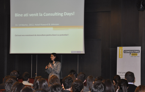 Consulting Days