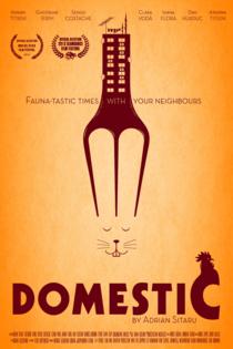 Afisul flimului Domestic