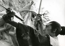 Spionul samurai