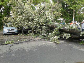 Furtuna Bucuresti (2)