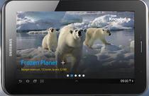 Tableta Samsung Galaxy Tab P3110