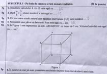 Subiecte Matematica 2013 Evaluarea Nationala