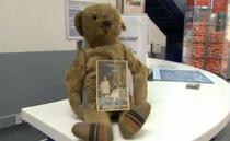 Ursuletul de plus pierdut pe aeroportul din Bristol