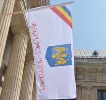Proiectul de steag al Regiunii Muntenia e marul discordiei