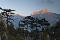 Cheile Tasnei - Parcul national Domogled - Valea Cernei