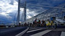 Biciclistii pe Podul Basarab