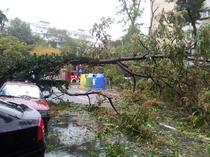 Furtuna in Bucuresti (arhiva)