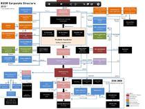 Structura afacerilor BSG
