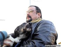 Steven Seagal a adoptat un maidanez