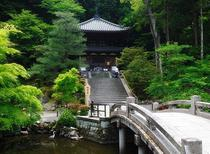 Gradinile templului Chion-in
