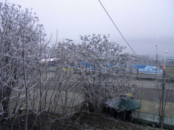 Zi de decembrie cu ceata si chiciura pe malul Dunarii