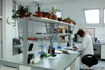 Cercetarea in Romania