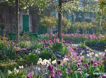 Gradina lui Claude Monet