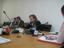 Maria Grapini, la Comisia din Senat