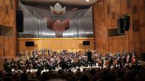 Orchestra Nationala Radio - foto:Virgil Oprina