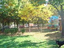 Bucata retrocedata din Parcul Tineretului