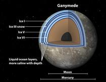 Redare artistica: Sectiune Ganymede
