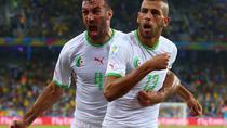 Algeria merge in optimi