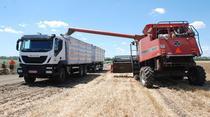 Transport de cereale