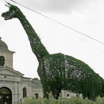 Dinozaur din buxus din sectorul lui Piedone