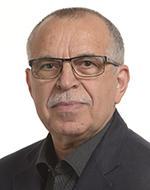 Victor Bostinaru, PSD