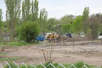 Arbori defrisati pentru aqua land