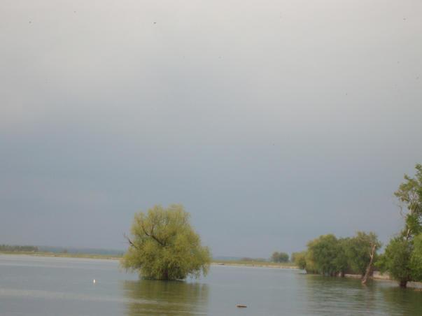 Dunarea (2)