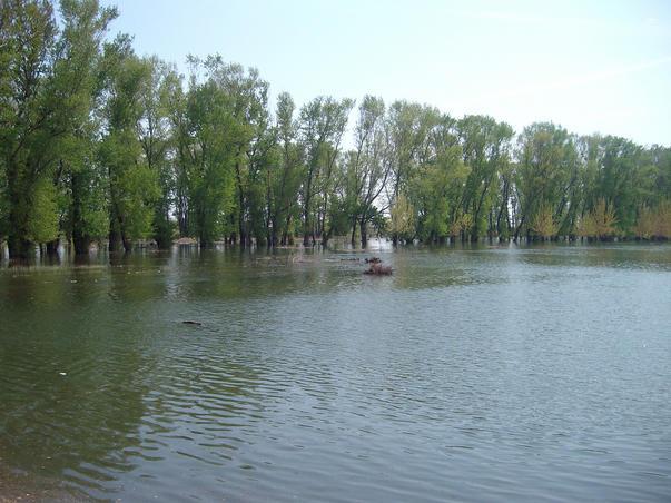 Dunarea (3)