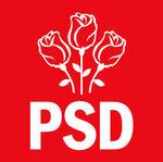 UPDATE Ședință la PSD după refuzul președintelui Iohannis de numire a unor miniștri. Olguța Vasilescu, propusă la Dezvoltare, iar Mircea Drăghici la Transporturi (surse)