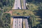 Cum ar putea arata un ecoduct pe autostrada Lugoj - Deva