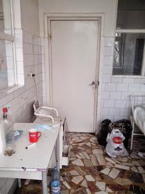 Mizeria din spitalele romanesti