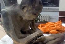 Calugar mumificat