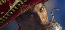 David Ferrer, invingator la Acapulco