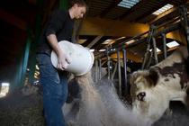 Noile fonduri UE pentru agricultura