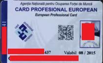 card profesional european