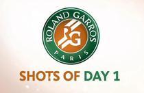 Roland Garros, loviturile primei zile