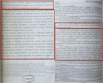 Teza de doctorat a lui Gabriel Oprea si cartea coordonatorului sau, Ion Neagu - fragment