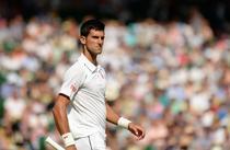Novak Djokovic, pe iarba de la Wimbledon