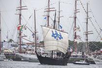 Nava Kamper Kogge fin Olanda