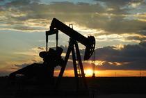 Sonda petrol