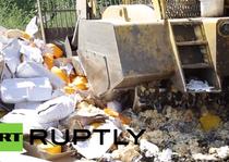 """Rusia distruge cu buldozerul branza """"de contrabanda"""""""