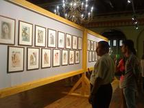 Aspect din expozitia Salvador Dali la Castelul Contacuzino din Busteni
